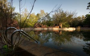 a dirty abandoned swimming pool at disney's river country theme park