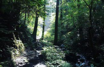 biwa-waterfall-trail-at-mount-takao-in-tokyo