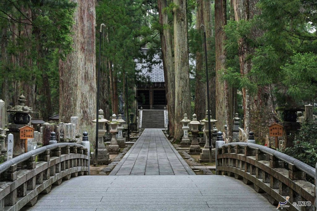 A long concrete path bordered with tall trees lines the way to a temple entrance in the distance.